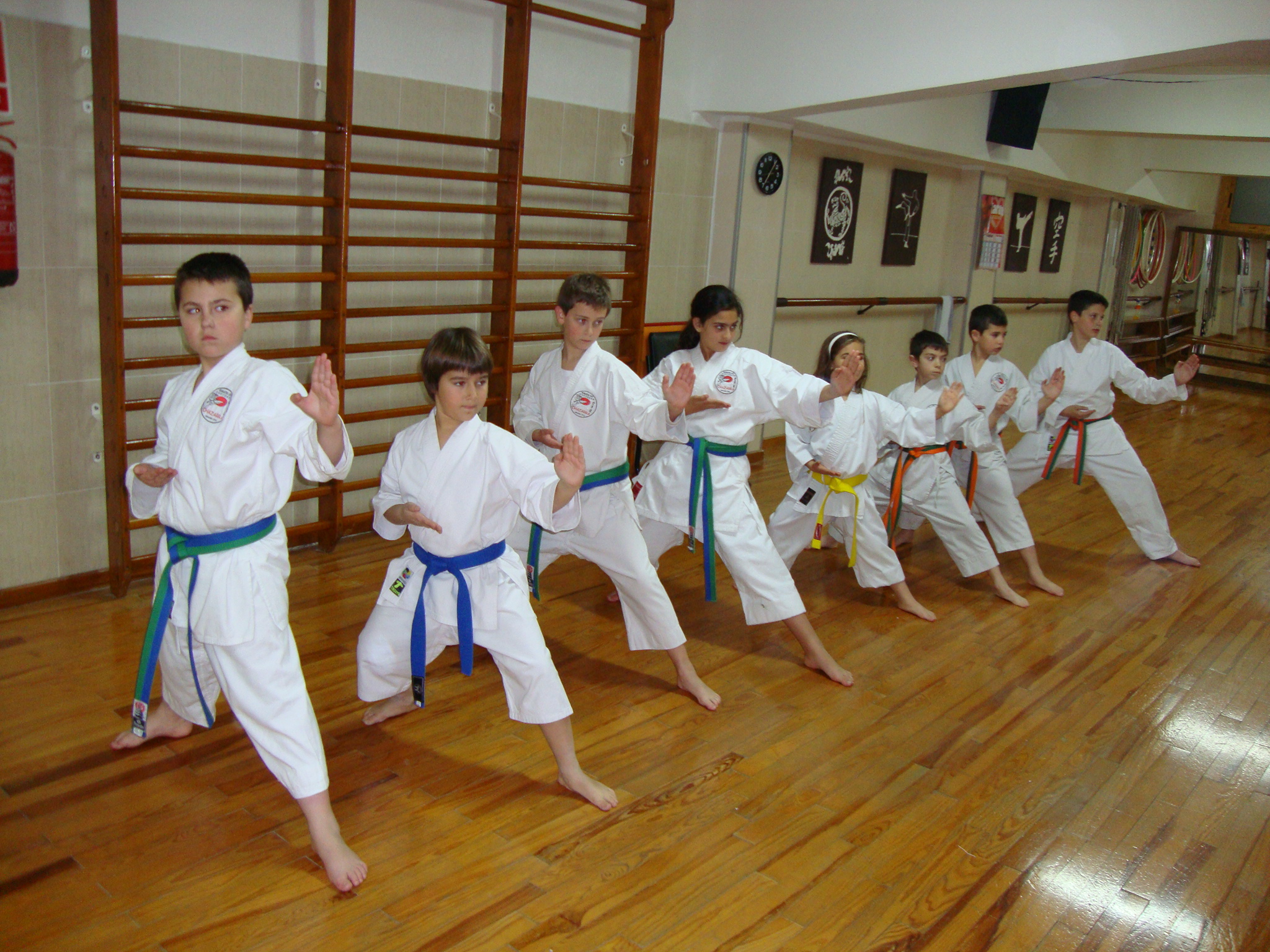 Karate-do Shotokan